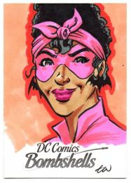 2017 DC Comics Bombshells Sketches / TRAVIS WALTON 【1/1】